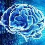 03ibm-chip-human-brain-robot-overlord_0