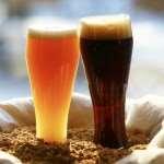 svetloe-pivo-2-1