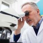 Наиболее эффективный и актуальный способ лечения рака в наши дни