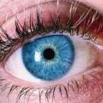 Простейший способ надолго сохранить здоровье глаз – полезные продукты
