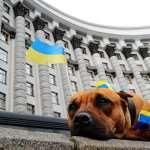 Время реформ оборачивается шоком для украинцев