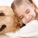 Здоровье домашних животных: как определить, что питомец заболел?