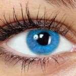 Глаукома и все что о ней нужно знать