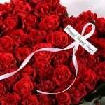 Какие розы подарить возлюбленной