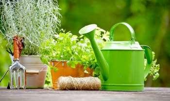 Без чего невозможно представить полноценный уход за садом и огородом
