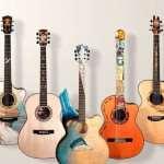 Виды акустических гитар и различия между ними