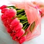 Наша доставка цветов в Николаеве рекомендует тюльпаны для первого свидания