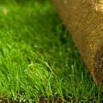 Рулонный газон — экологичность и снижения шума