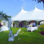 Плюсы и минусы шатра для свадьбы