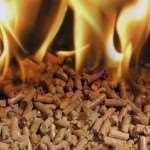 Евродрова – современное топливо для частного дома