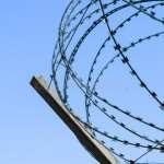 Колючая проволока — защищенный забор