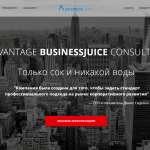 Профессиональные услуги по управленческому консалтингу